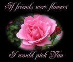 Flower Wallpaper For Friendship Day Photos - Happy Friendship Day Photos Images Photos