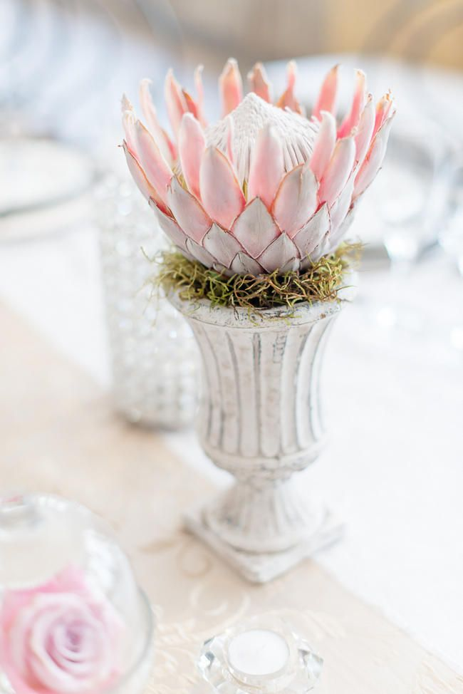 Pink, blush and cream wedding reception table details with stunning King Protea // Lightburst Photography