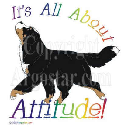 embroidery designs bernese mountain dogs | Bernese Mountain Dog Attitude t-shirts, sweatshirt, prints, note cards