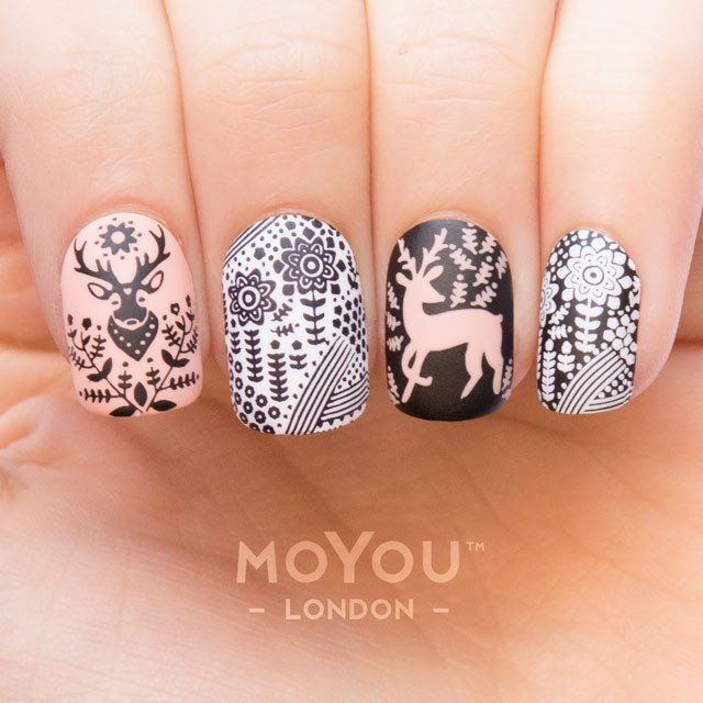 Animal 13 | MoYou London