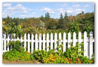 Cheap Garden Fences, Vegetable Garden Fencing Ideas, Wire Garden Fence