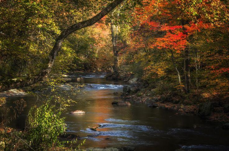 Fotografía Colors along the River por Kip Stahl en 500px Río en el Parque Nacional de las Grandes Montañas Humeantes, en el lado Cherokee, Carolina del Norte, Estados Unidos.