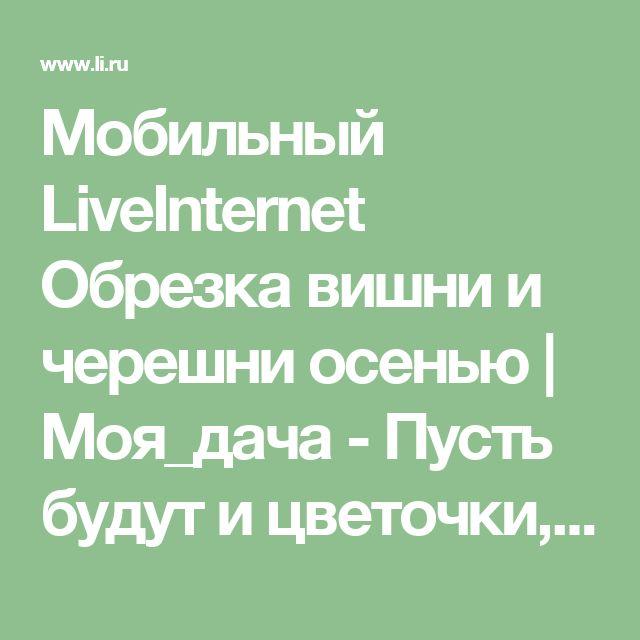 Мобильный LiveInternet  Обрезка вишни и черешни осенью   Моя_дача - Пусть будут и цветочки, и ягодки!  
