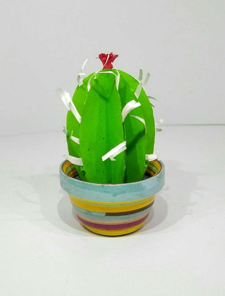 These miniature cactus is made with color papers.