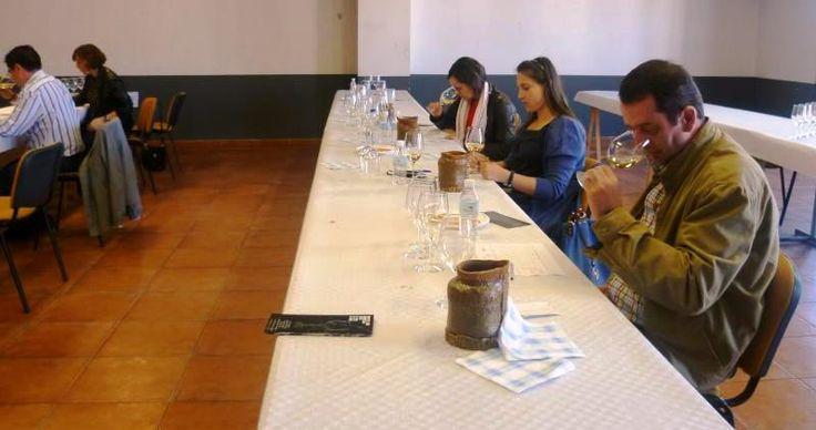 Convocados los Premios Sarmientos al mejor vino verdejo D.O. Rueda en La Seca https://www.vinetur.com/2014022714611/convocados-los-premios-sarmientos-al-mejor-vino-verdejo-do-rueda-en-la-seca.html