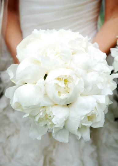 A pristine white bridal bouquet by The Garden Gate. Photo by Andrea Polito Photography #wedding #bridal #bouquet #white