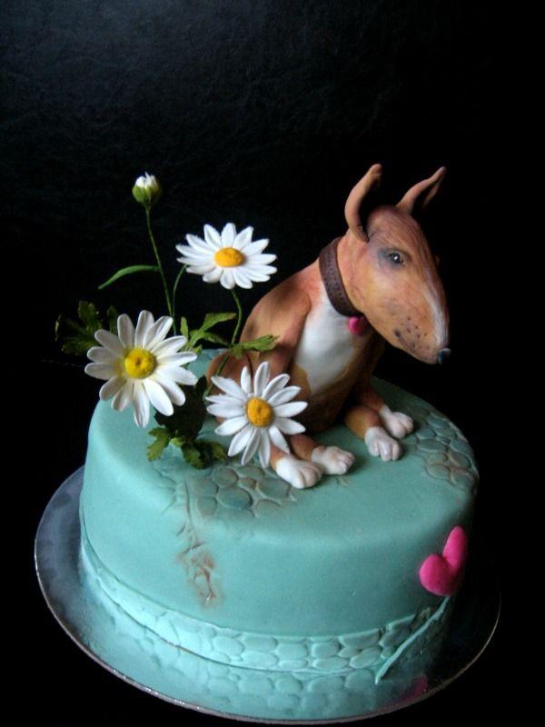 Bulterier cake