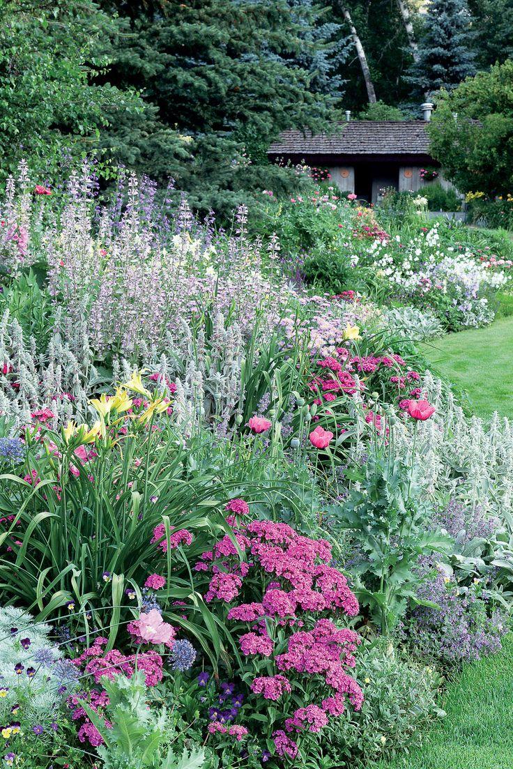 Pink garden border