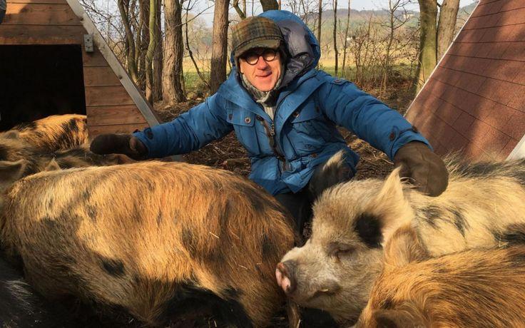 http://www.leparisien.fr/culture-loisirs/tv/france-3-attention-les-cochons-ca-tourne-12-04-2017-6846846.php