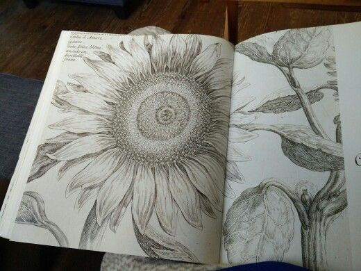 Sunflower Line Drawing : 341 best ink images on pinterest tattoo ideas inspiration