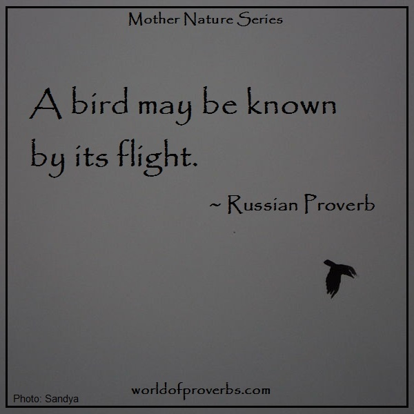 Famous Quotes: A Bird May Be Known By