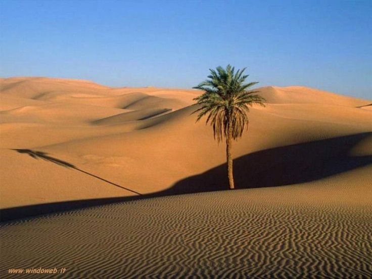 africa paesaggi naturali - Cerca con Google
