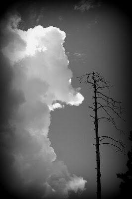 Suomi Finland matkablogi: Nallen muotoinen pilvi: Suo siellä ja vetelä täällä