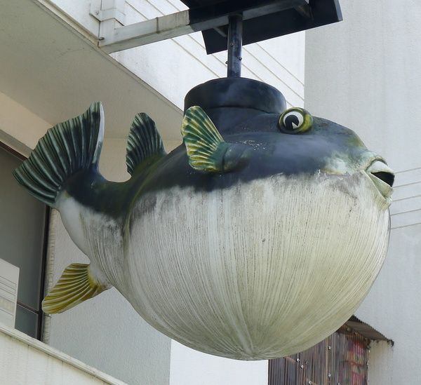 Blowfish Sign - Japan