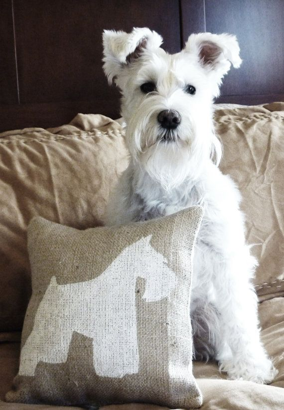 Natural Burlap Pillow with Handpainted by CourtneesCreations, $25.99    Chauncey & his pillow!