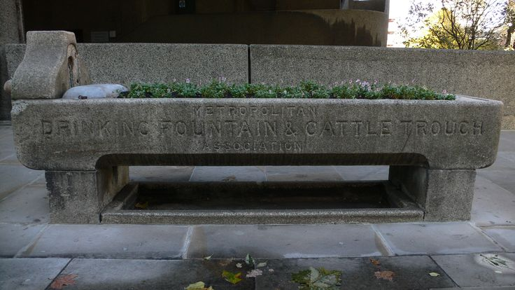 Metropolitan Drinking Fountain and Cattle Trough Association ...