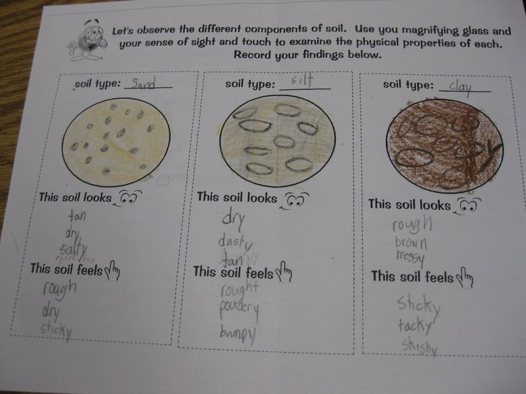 29 best images about science on pinterest anchor charts for Types of soil for kids