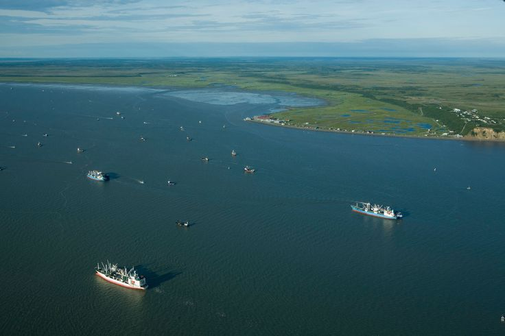The battle for Bristol Bay isn't over