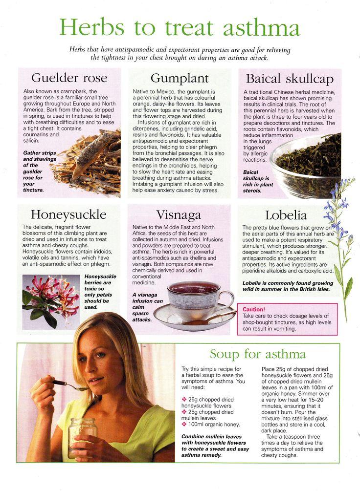 Herbs:  #Herbs to Treat Asthma.