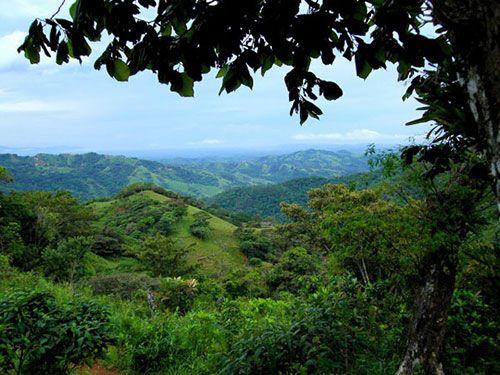 Mountains near San Ramon, Costa Rica