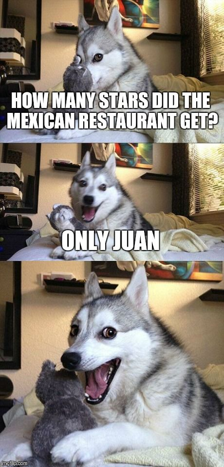 Bad Pun Dog | HOW MANY STARS DID THE MEXICAN RESTAURANT GET? ONLY JUAN | image tagged in memes,bad pun dog | made w/ Imgflip meme maker