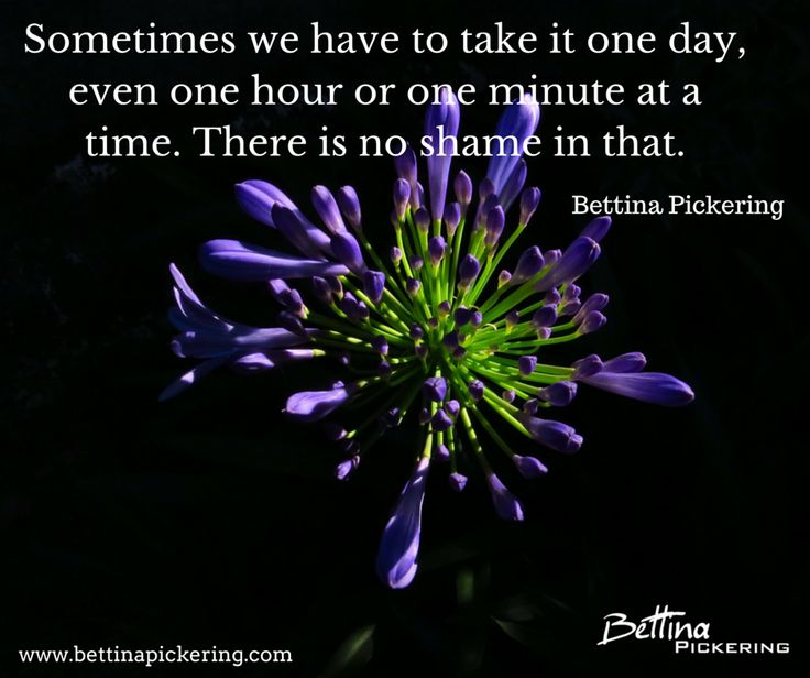 Sometimes we have to take it one day, even one hour or one minute at a time. There is no shame in that. - Bettina Pickering #emotions