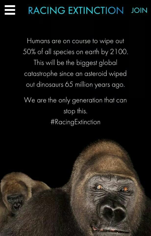 Racing Extinction, by the makers of The Cove