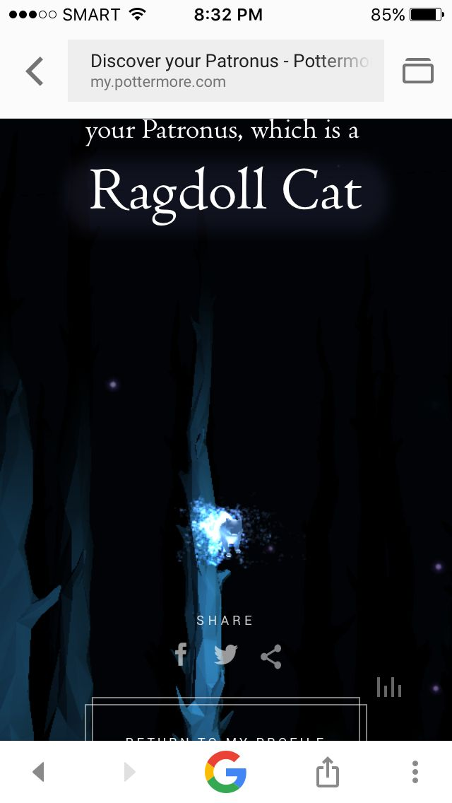 My Patronus is a Ragdoll cat!!! What's yours! (Quiz was taken in Pottermore)
