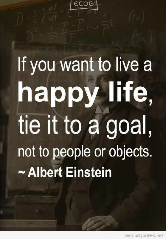 Hey, everyone! Today you will find some quotes said by Albert Einstein. In his words, you can gain positive energy as well as passion from this great man. Albert Einstein is so famous that his ...