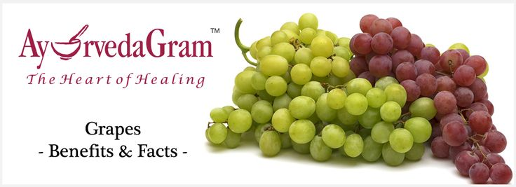 Grapes - Nutrition facts and Benefits Grapes are one of the fruits extensively used in Ayurvedic medicines. Let's know more about grapes. http://www.ayurvedagram.com/grapes-nutrition-facts-benefits/