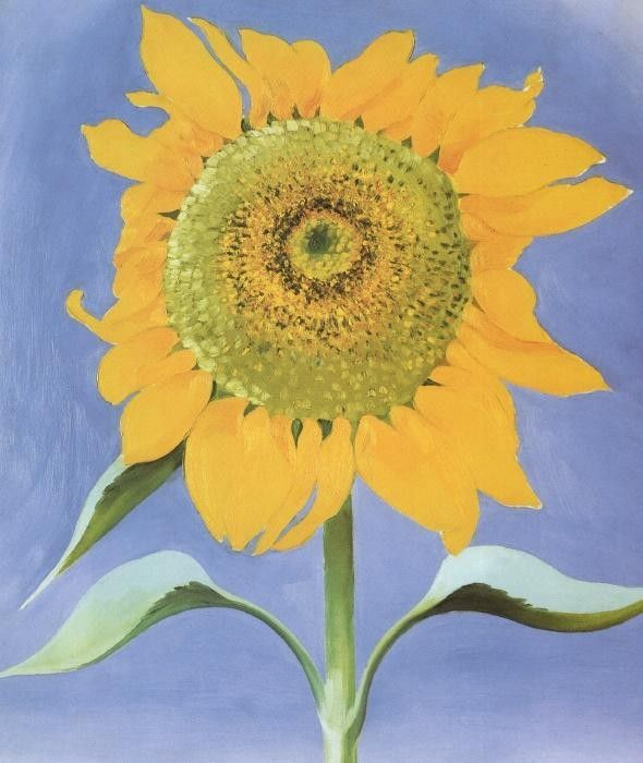 georgia o'keeffe paintings | Georgia O'Keeffe Paintings - Georgia O'Keeffe Sunflower, New Mexico ...