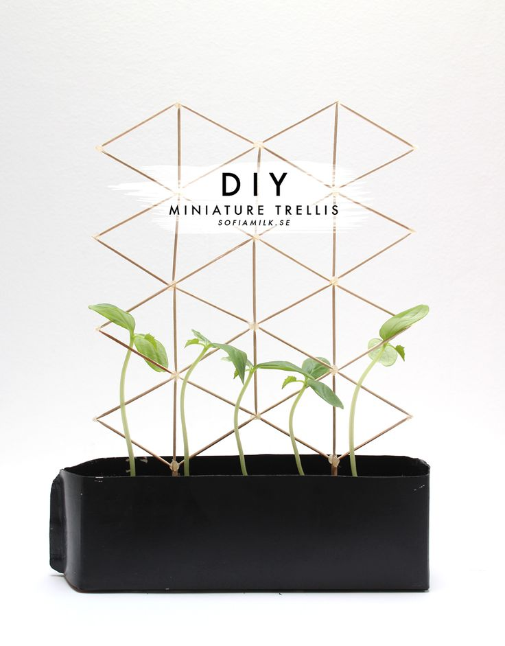 DIY Miniature Trellis Tutorial