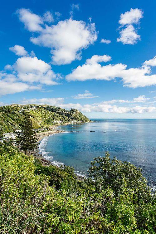 Pukerua Bay  Ref: NZNK 169066