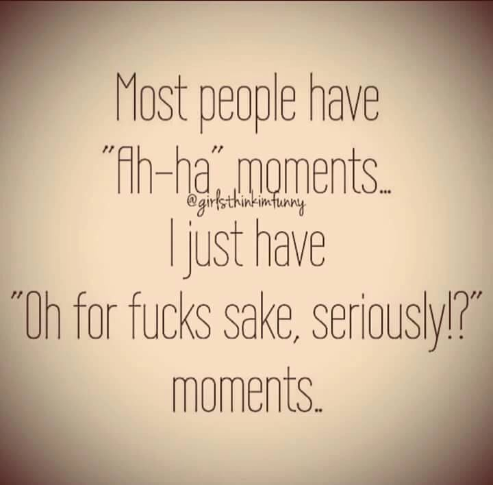 "Most people have ""Ah-ha"" moments... I just have ""Oh for fucks sake, seriously!?"" moments..."