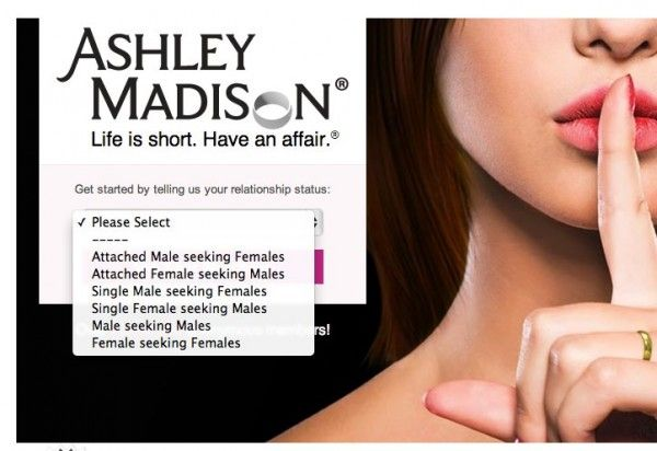 ashley madison hacking marriage infidelity cheating adultery internet