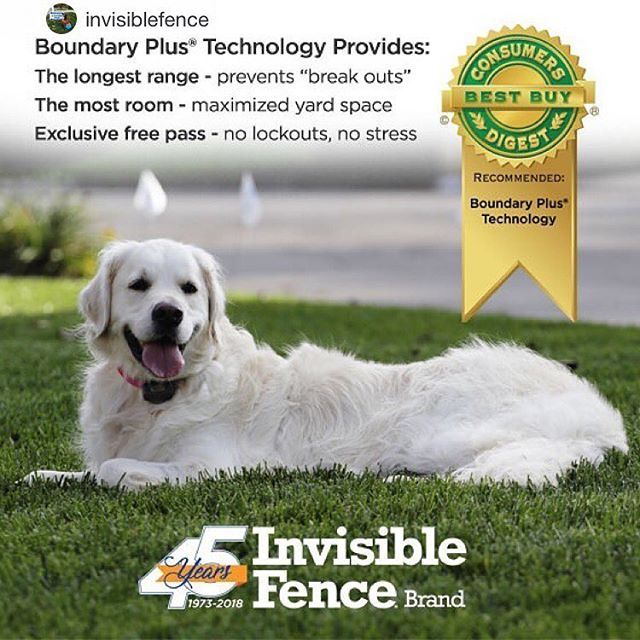 Ask Us About Our New Upgrade Offer For Boundaryplus Repost From Invisiblefence Ranked Best Buy From Cons Cool Things To Buy Pet Fence Invisible Fence