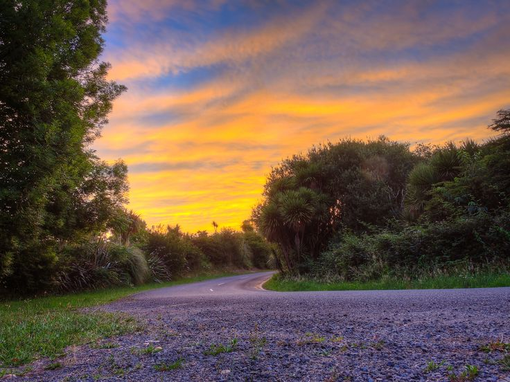 Beautiful Summer sunset on a quiet country New Zealand road. Purchase a print, cards, or a full size digital file of this image at www.kirkvogel.com