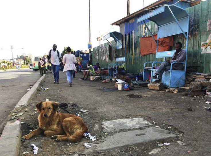 Pourquoi l'Éthiopie? La question revient souvent. À part les images de Vision mondiale nous ayant inondés de reportages sur des enfants mourant de faim, on connaît peu de choses de ce vaste pays d'Afrique.