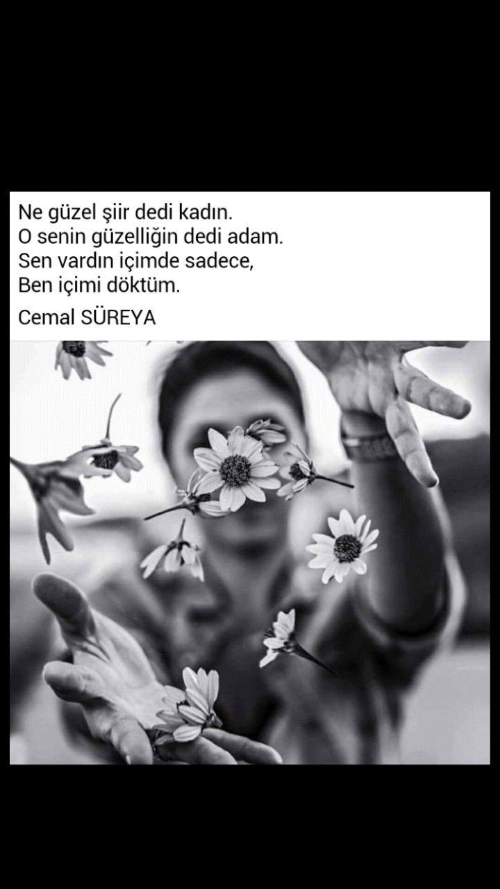 Ne güzel şiir dedi kadın O senin güzelliğin dedi adam Cemal Süreya