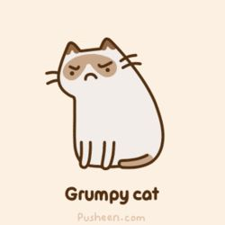 Tard grumpy cat GIF by Pusheen (source in comments) - Imgur