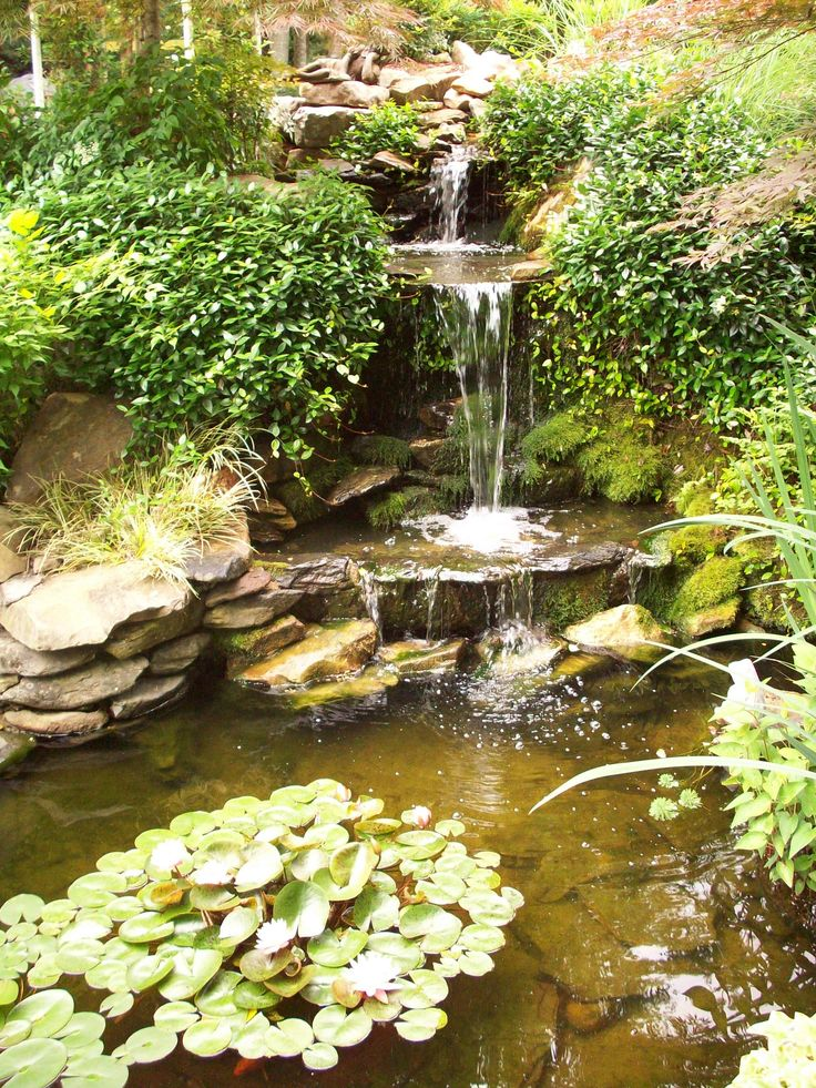 76 best images about koi pond and waterfalls on pinterest for Koi ponds and gardens