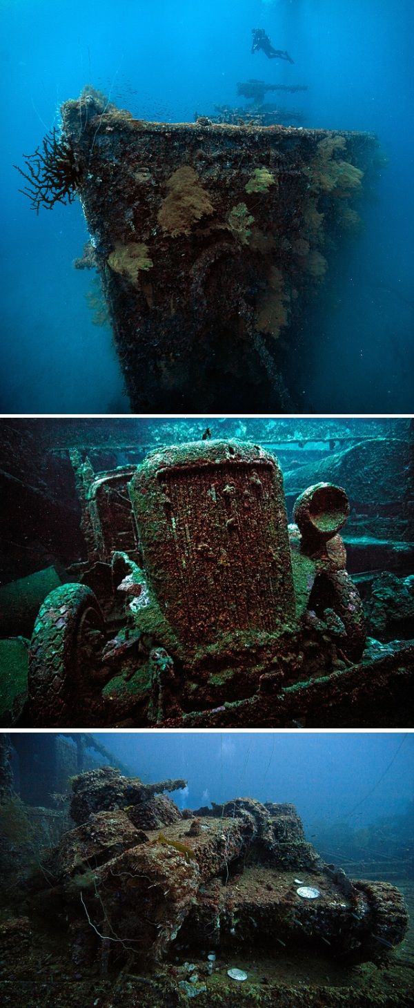 "Built in 1919, the Japanese cargo ship San Francisco Maru served as a transport between Japan and the ""Inner South Seas"" before arriving in Truk Lagoon on February 5, 1944. Two weeks later, a Grumman TBF Avenger from the USS Essex scored a direct hit, sending the it to the bottom of the Pacific Ocean. Rediscovered by Jaques Cousteau in 1969, San Francisco Maru is known as the ""Million Dollar Wreck"" due to the value of its military cargo, including three Type 95 Ha Go tanks."