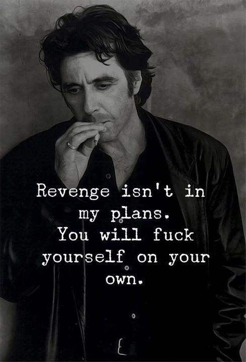Positive Quotes : Revenge isnt in my plans..