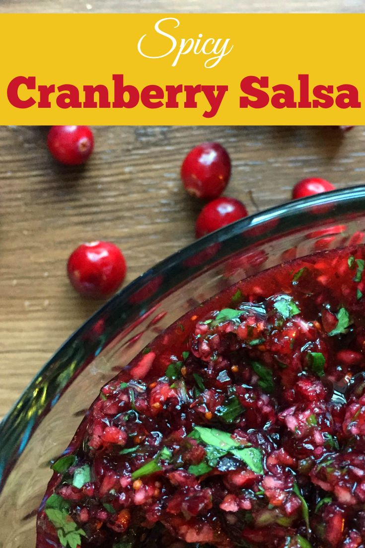 An easy (and spicy!) fresh cranberry salsa, a wintery alternative to classic tomato salsa.