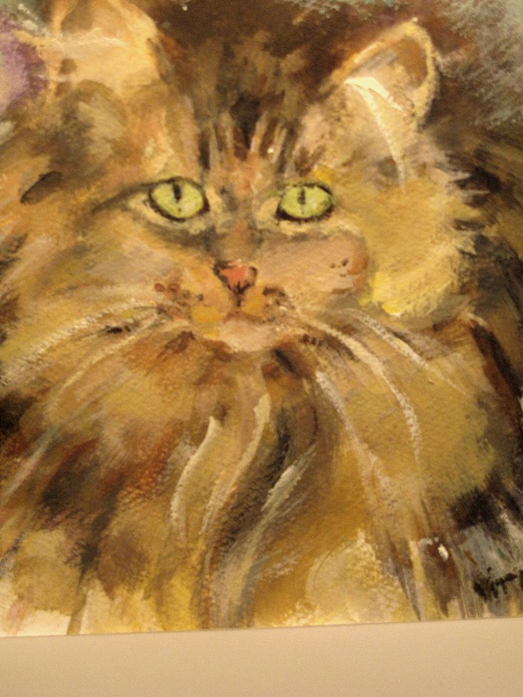 This is the finished image of a cat done in acrylic.  The sketch of this cat is also here in this board.
