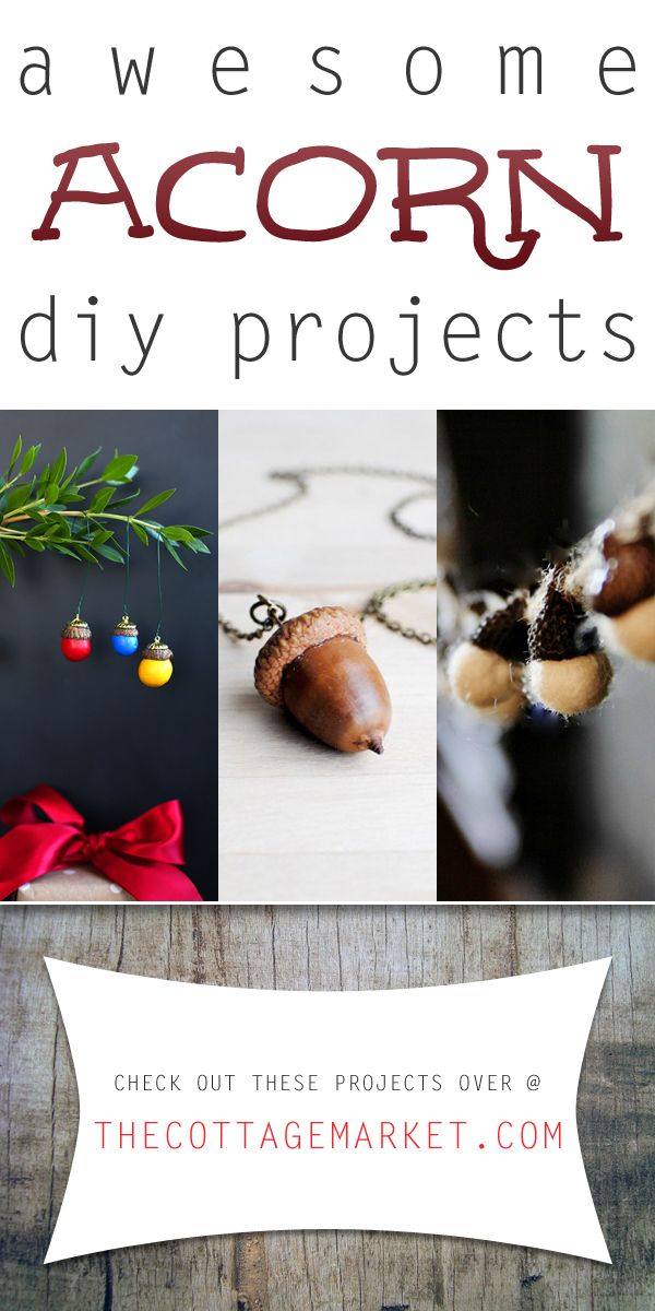 You are going to go nuts over today 39 s collection of for How to preserve acorns for crafts