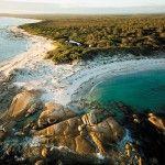 Three great reasons to visit Mount William National Park. #tasmania #discovertasmania #mtwilliamnp