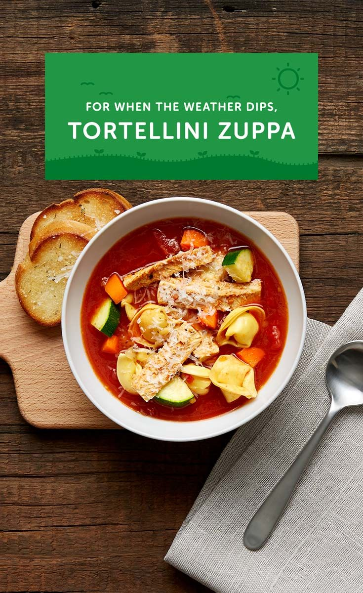 "Vegetarian Tortellini Zuppa is Italian for ""soup"" and English for ""tasty."""