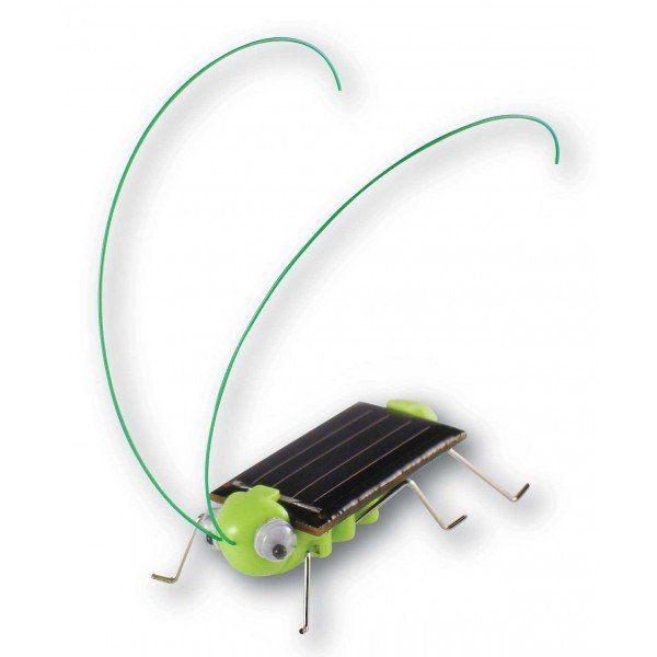 Simpático grillo, igual que los auténticos, le encanta recibir los rayos del sol y no para de zumbar. El Mini Kit Grillo solar es muy sencillo de montar y cualquier niño con un poco de ayuda puede hacerlo y familiarizarse con las energías renovables. Funciona sin pilas gracias a la luz solar.