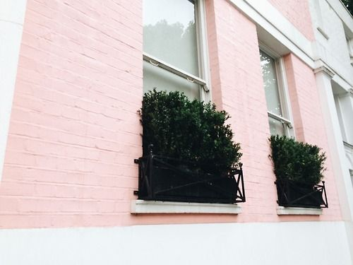 bakerie:  walking around the posh houses in Chelsea, I will live...